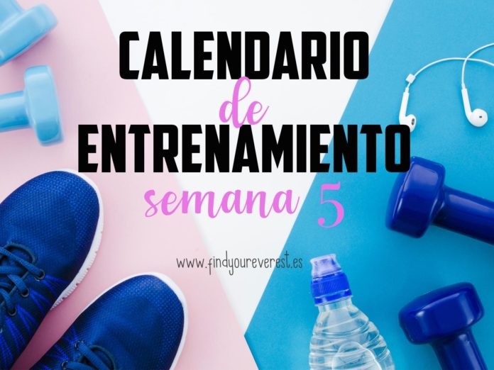 Calendario de entrenamiento semana 5