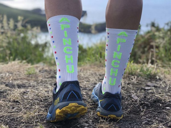 A Pinchu Summer Socks