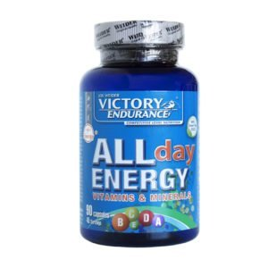 VICTORY ENDURANCE ALL DAY ENERGY